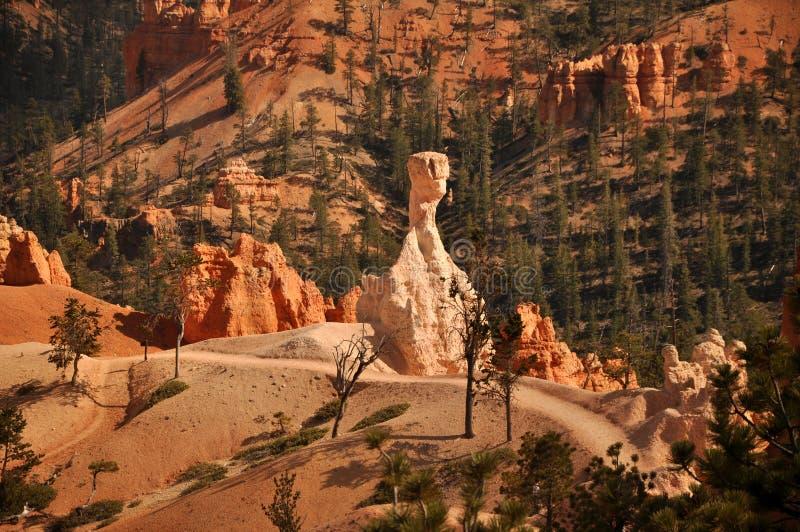 Μεγάλο πορτοκαλί Hoodoo στο πάρκο φαραγγιών του Bryce στοκ φωτογραφίες με δικαίωμα ελεύθερης χρήσης