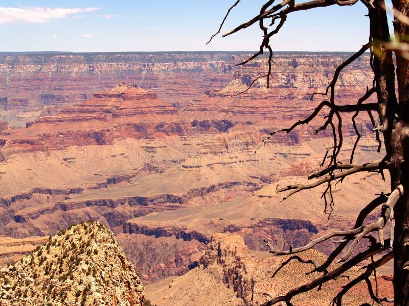 μεγάλο σημείο grandview φαραγγιώ στοκ εικόνα