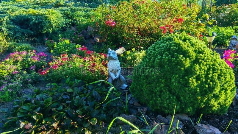 Μεγάλο Flowerbed με ένα κουνέλι στοκ φωτογραφίες