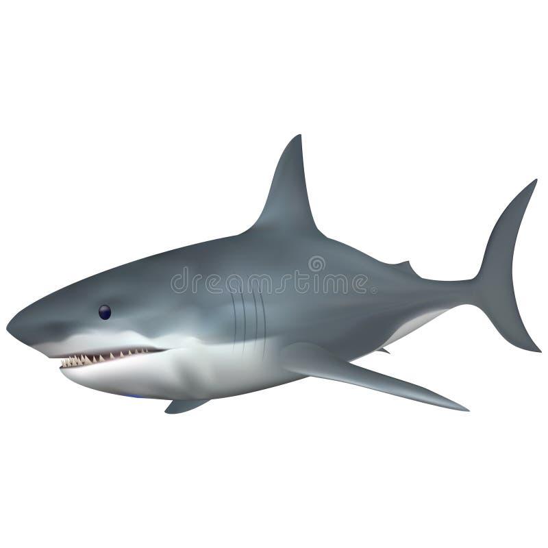 Μεγάλα άσπρα saltwater καρχαριών ψάρια Πλήρες συμβατό σύστημα Δημιουργημένος με το πλέγμα κλίσης στοκ φωτογραφία με δικαίωμα ελεύθερης χρήσης