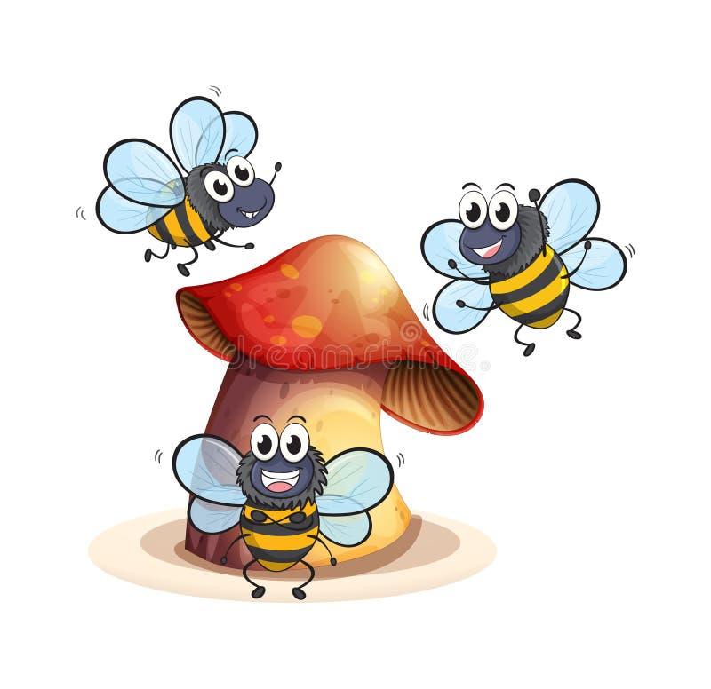 Μεγάλες εγκαταστάσεις μανιταριών με τρεις μέλισσες απεικόνιση αποθεμάτων