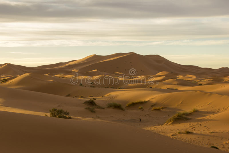 Μεγάλες θάλασσες των αμμόλοφων Erg Chebbi στο Μαρόκο στοκ εικόνες