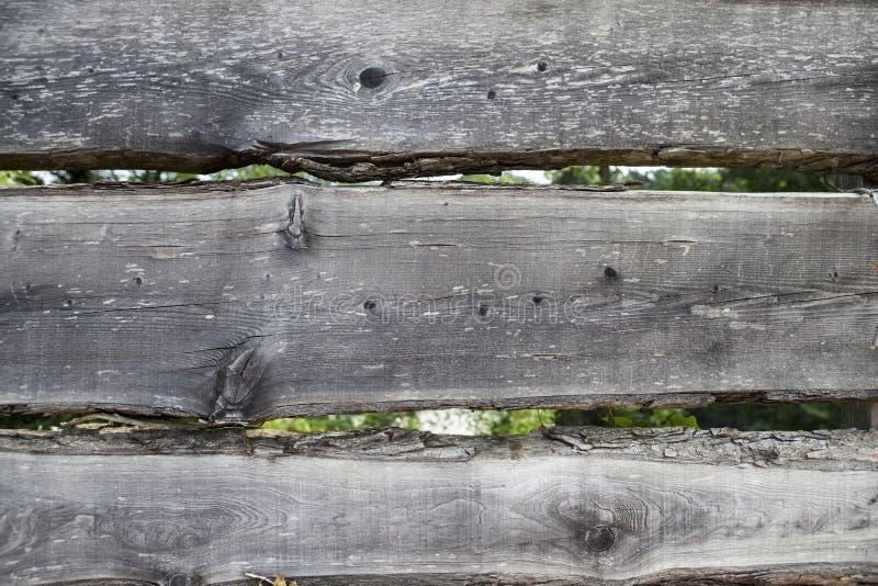 Μεγάλες, σκοτεινές, παλαιές ξύλινες σανίδες με την πράσινη χλόη Επιλογές για το οργανικό εστιατόριο Υπόβαθρο για τα φυλλάδια, κατ στοκ εικόνες με δικαίωμα ελεύθερης χρήσης