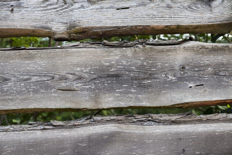Μεγάλες, σκοτεινές, παλαιές ξύλινες σανίδες με την πράσινη χλόη Επιλογές για το οργανικό εστιατόριο Υπόβαθρο για τα φυλλάδια, κατ στοκ φωτογραφίες