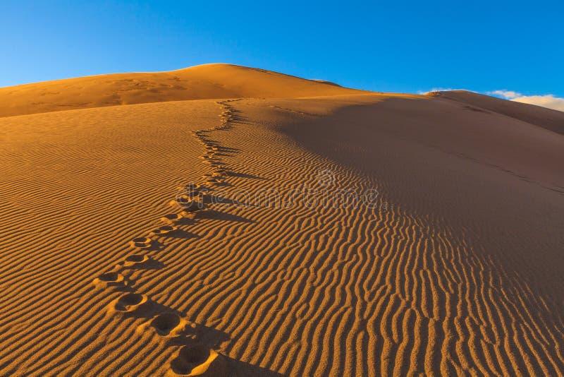 Μεγάλοι αμμόλοφοι άμμου στοκ εικόνες με δικαίωμα ελεύθερης χρήσης