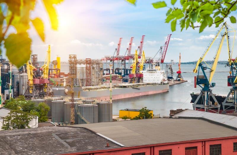 Μεγάλοι σκάφος και γερανοί στο θαλάσσιο λιμένα στη θερινή ημέρα στοκ εικόνα με δικαίωμα ελεύθερης χρήσης