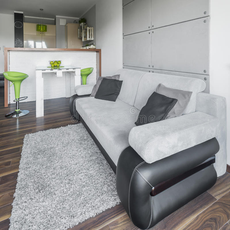 Μεγάλος γκρίζος καναπές στοκ εικόνες με δικαίωμα ελεύθερης χρήσης
