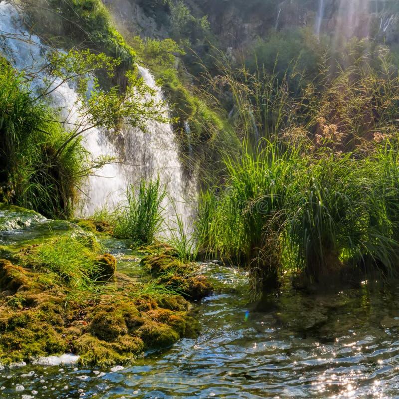 Μεγάλος καταρράκτης στις λίμνες Plitvice στοκ εικόνες με δικαίωμα ελεύθερης χρήσης