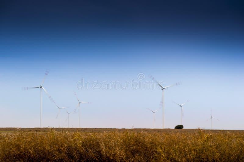 μεγάλος μπλε σύννεφων ακτών ανατολικών αγροκτημάτων καιρικός άσπρος αέρας ουρανού της Ιρλανδίας συμπαθητικός στοκ φωτογραφίες με δικαίωμα ελεύθερης χρήσης
