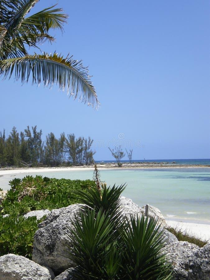 Μεγάλος όρμος Bahama στοκ εικόνες