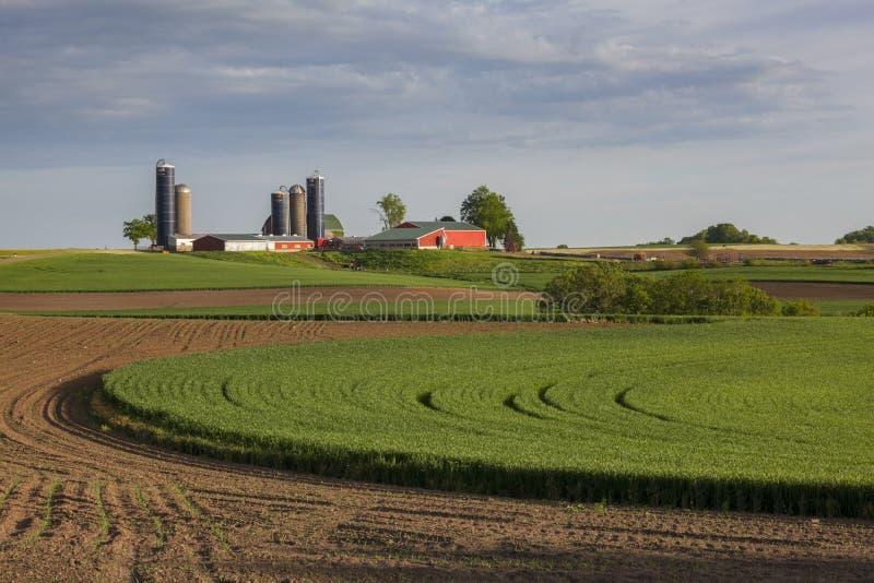 Μεγάλο γαλακτοκομικό αγρόκτημα στοκ φωτογραφίες