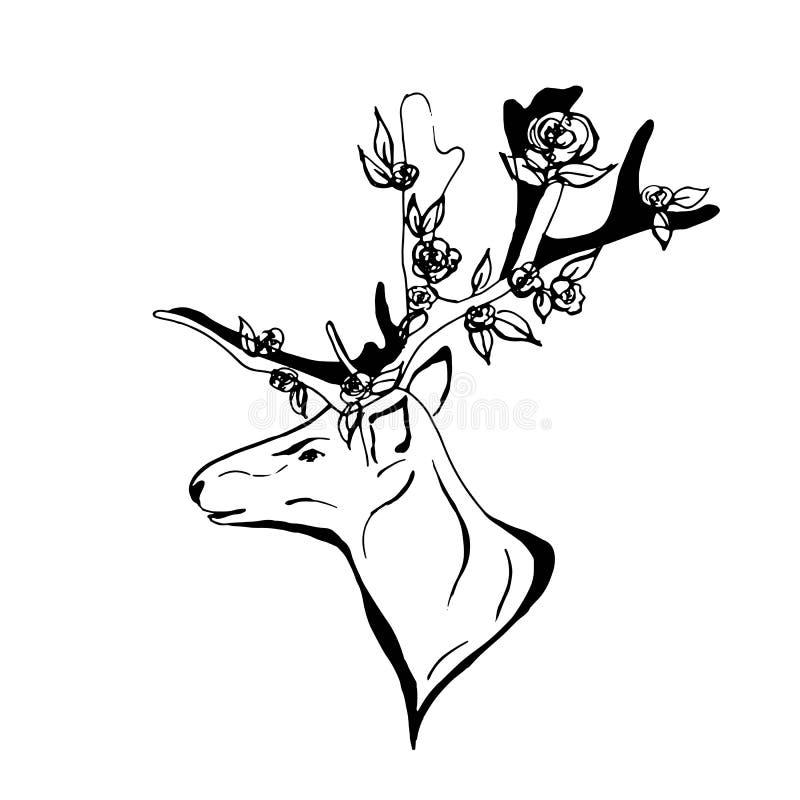 μεγάλο διάνυσμα σκίτσων elaphus ελαφιών cervus ελαφόκερων ελεύθερη απεικόνιση δικαιώματος