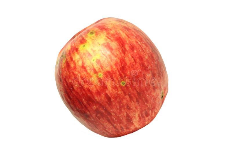 Μεγάλο κόκκινο μήλο από τον κήπο 10 στοκ εικόνα με δικαίωμα ελεύθερης χρήσης