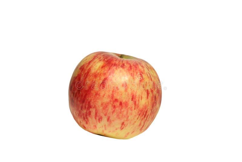 Μεγάλο κόκκινο μήλο από τον κήπο 11 στοκ φωτογραφίες