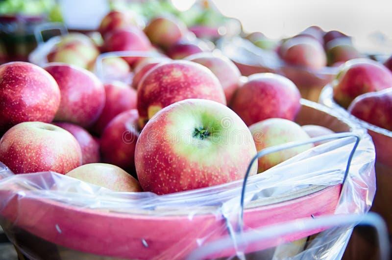 Μεγάλο σύνολο καλαθιών μπούσελ των φρέσκων παραγόμενων στην ίδια περιοχή κόκκινων μήλων στο lo στοκ εικόνες με δικαίωμα ελεύθερης χρήσης