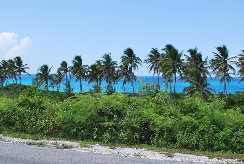 Μεγάλο Exuma Μπαχάμες στοκ φωτογραφία με δικαίωμα ελεύθερης χρήσης