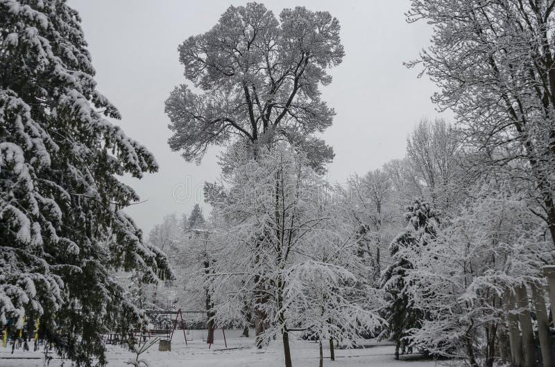 Μεγαλοπρεπής άποψη των χιονωδών δέντρων και της γωνίας παιδιών στο χειμερινό πάρκο, Bankya στοκ φωτογραφίες με δικαίωμα ελεύθερης χρήσης