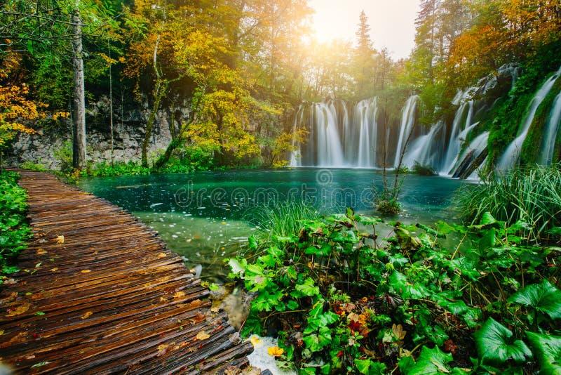 Μεγαλοπρεπής άποψη σχετικά με το τυρκουάζ νερό και τις ηλιόλουστες ακτίνες στο εθνικό πάρκο λιμνών Plitvice Κροατία στοκ εικόνα με δικαίωμα ελεύθερης χρήσης