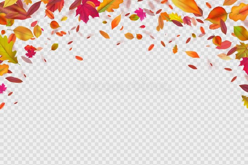 μειωμένα φύλλα φθινοπώρο&upsilo Φθινοπωρινή δασική πτώση φυλλώματος Διανυσματική απεικόνιση που απομονώνεται στην άσπρη ανασκόπησ ελεύθερη απεικόνιση δικαιώματος