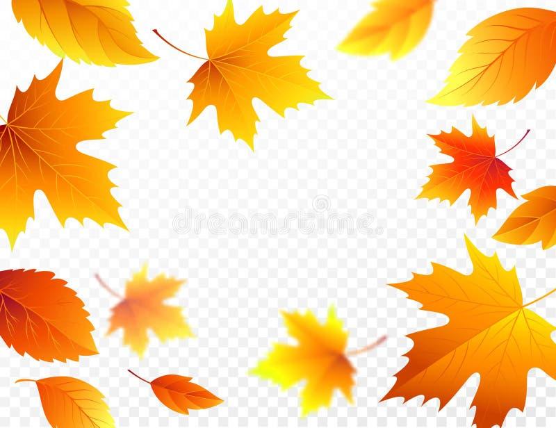 Μειωμένα φύλλα φθινοπώρου στο διαφανές ελεγμένο υπόβαθρο Φθινοπωρινό φύλλο πτώσης φυλλώματος που πετά στη θαμπάδα κινήσεων αέρα δ διανυσματική απεικόνιση