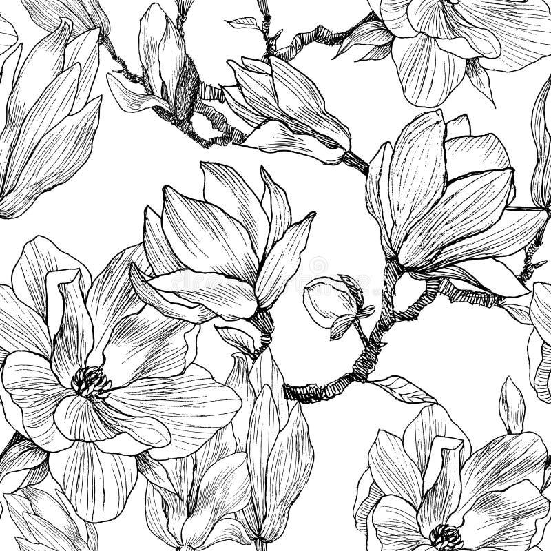 Μελάνι, μολύβι, τα φύλλα και τα λουλούδια Magnolia Άνευ ραφής υπόβαθρο σχεδίων Συρμένη χέρι ζωγραφική φύσης ελεύθερος διανυσματική απεικόνιση