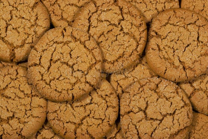 μελάσες μπισκότων στοκ εικόνα