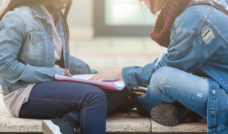 Μελέτη δύο νέα γυναικών για έναν πάγκο στοκ εικόνα