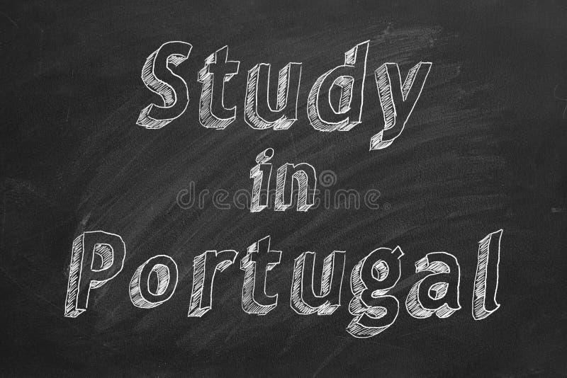 Μελέτη στην Πορτογαλία διανυσματική απεικόνιση