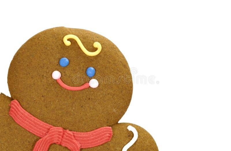 μελόψωμο μπισκότων στοκ φωτογραφίες