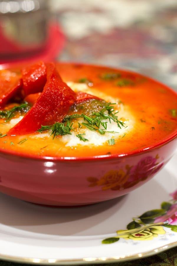 Μεξικάνικα τρόφιμα - rancheros huevos Τα αυγά κυνήγησαν λαθραία στο salsa σάλτσας ντοματών και άλλα λαχανικά στοκ φωτογραφία με δικαίωμα ελεύθερης χρήσης