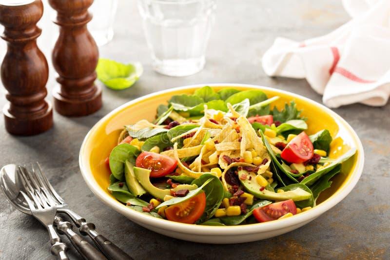 Μεξικάνικη σαλάτα με το καλαμπόκι και το αβοκάντο στοκ εικόνες