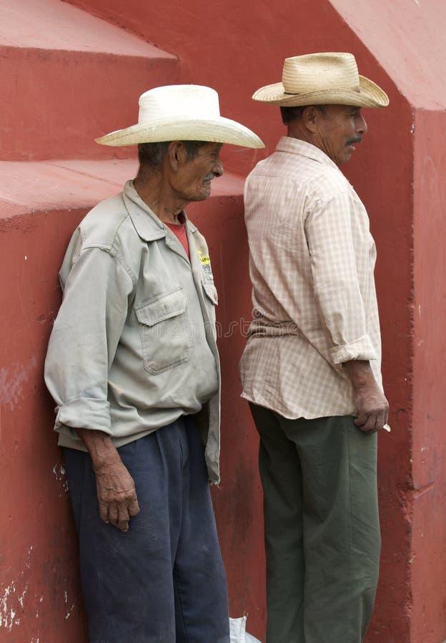 Μεξικάνικοι διακινούμενοι εργαζόμενοι στοκ εικόνα με δικαίωμα ελεύθερης χρήσης