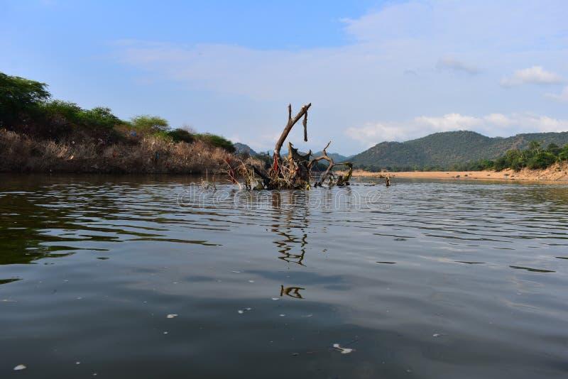 Μερίδα βουνών τα φθινόπωρα Hogenakkal στην Ινδία στοκ φωτογραφία με δικαίωμα ελεύθερης χρήσης