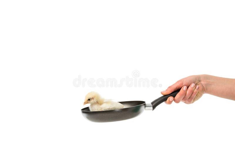 μερική άποψη του τηγανίζοντας τηγανιού εκμετάλλευσης γυναικών με λίγο νεοσσό στοκ εικόνες