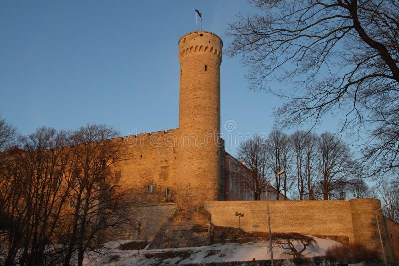 Μεσαιωνικό βαλτικό κάστρο και ψηλός ή πύργος Pikk Hermann στοκ εικόνες