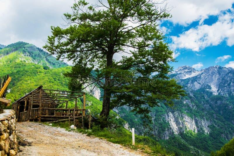 Μεσαιωνικό ξύλινο σπίτι στο βουνό στοκ εικόνες