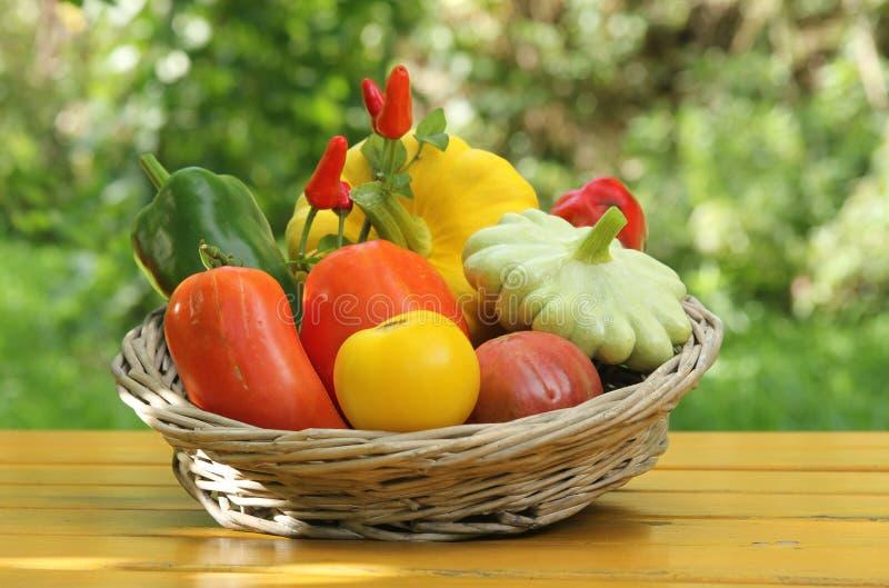 Μεσογειακά λαχανικά στοκ εικόνες με δικαίωμα ελεύθερης χρήσης