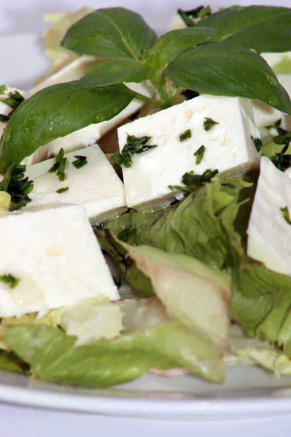 μεσογειακή σαλάτα φέτας  στοκ φωτογραφίες με δικαίωμα ελεύθερης χρήσης