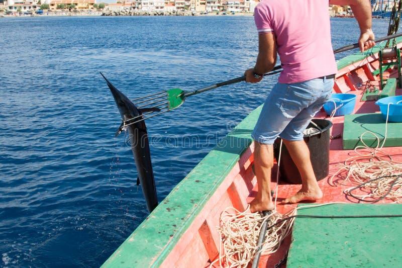 Μεσογειακό spearfish στοκ φωτογραφία με δικαίωμα ελεύθερης χρήσης