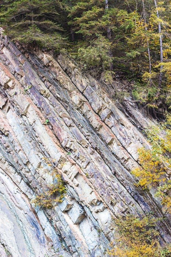 Μεταμορφική σύσταση στρωμάτων βράχου στα Καρπάθια βουνά στοκ εικόνες