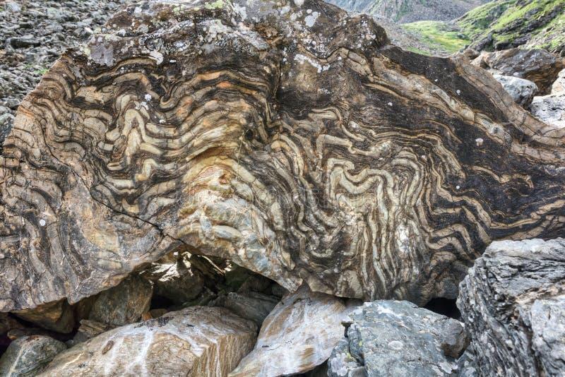 Μεταμορφικός βράχος με μια βαλμένη σε στρώσεις σύσταση στοκ φωτογραφίες με δικαίωμα ελεύθερης χρήσης