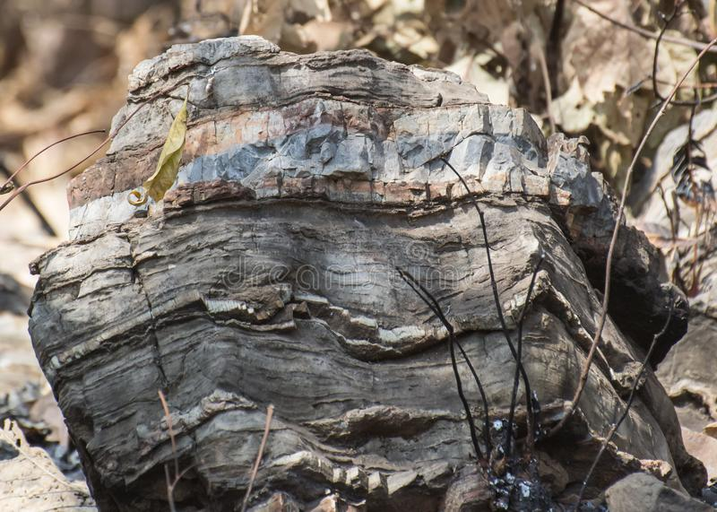 Μεταμορφικός βράχος με τις ζώνες στοκ εικόνες