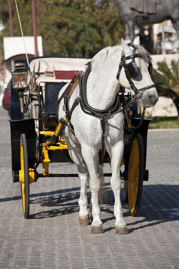 Download μεταφορά στοκ εικόνες. εικόνα από antiquate, όχημα, τρύγος - 22776910