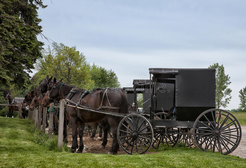 Μεταφορά Amish στοκ φωτογραφία με δικαίωμα ελεύθερης χρήσης