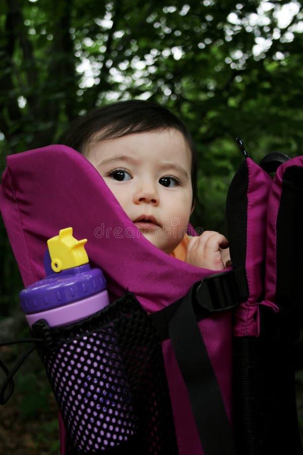 μεταφορέας μωρών στοκ φωτογραφία