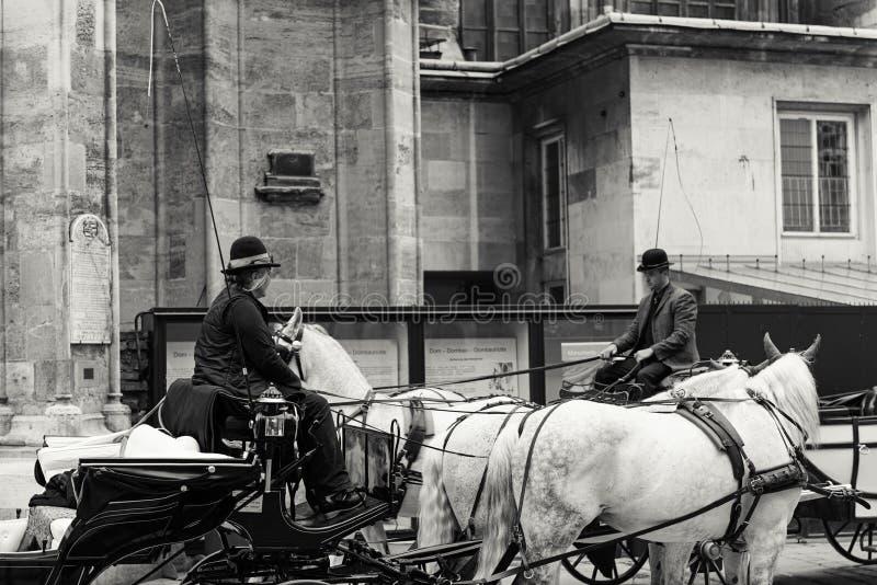 Μεταφορές αλόγων, Βιέννη στοκ φωτογραφία