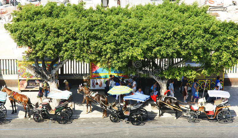 Μεταφορές για τους τουρίστες στο Παλέρμο στοκ φωτογραφία με δικαίωμα ελεύθερης χρήσης