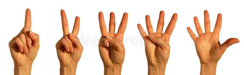 μετρώντας λευκό χεριών στοκ εικόνες με δικαίωμα ελεύθερης χρήσης