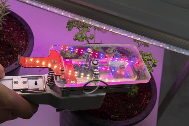 μετρώντας συσκευή του CO2 για τη φωτοσύνθεση του growi εγκαταστάσεων στοκ εικόνες με δικαίωμα ελεύθερης χρήσης