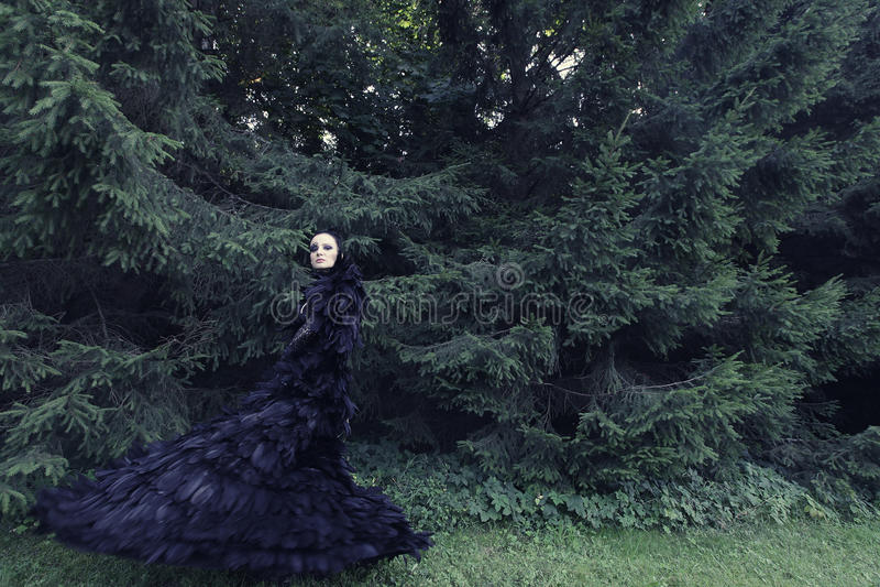 Μελαχροινή βασίλισσα στο πάρκο στοκ φωτογραφία